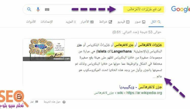 semantic search ماهو البحث الدلالى فى جوجل